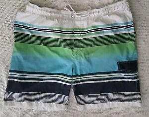 b1ccd58fd8 Mens Sonoma White Blue Green Stripe Swim Suit Board Shorts Surf ...
