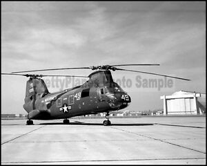 USMC-H-46-Sea-Knight-HMM-165-White-Knights-MCAS-Tustin-1966-8x10-Photo
