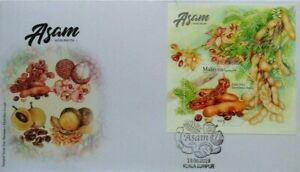 Malaysia-FDC-with-Miniature-Sheet-19-06-2019-Sour-Fruits