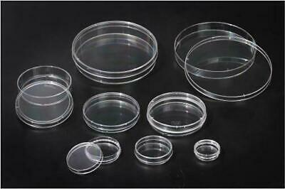 TC Treated Sterile to SAL10-6 175cm2 pck of 5 SPL Cell Culture Flask with Filter Cap,PS