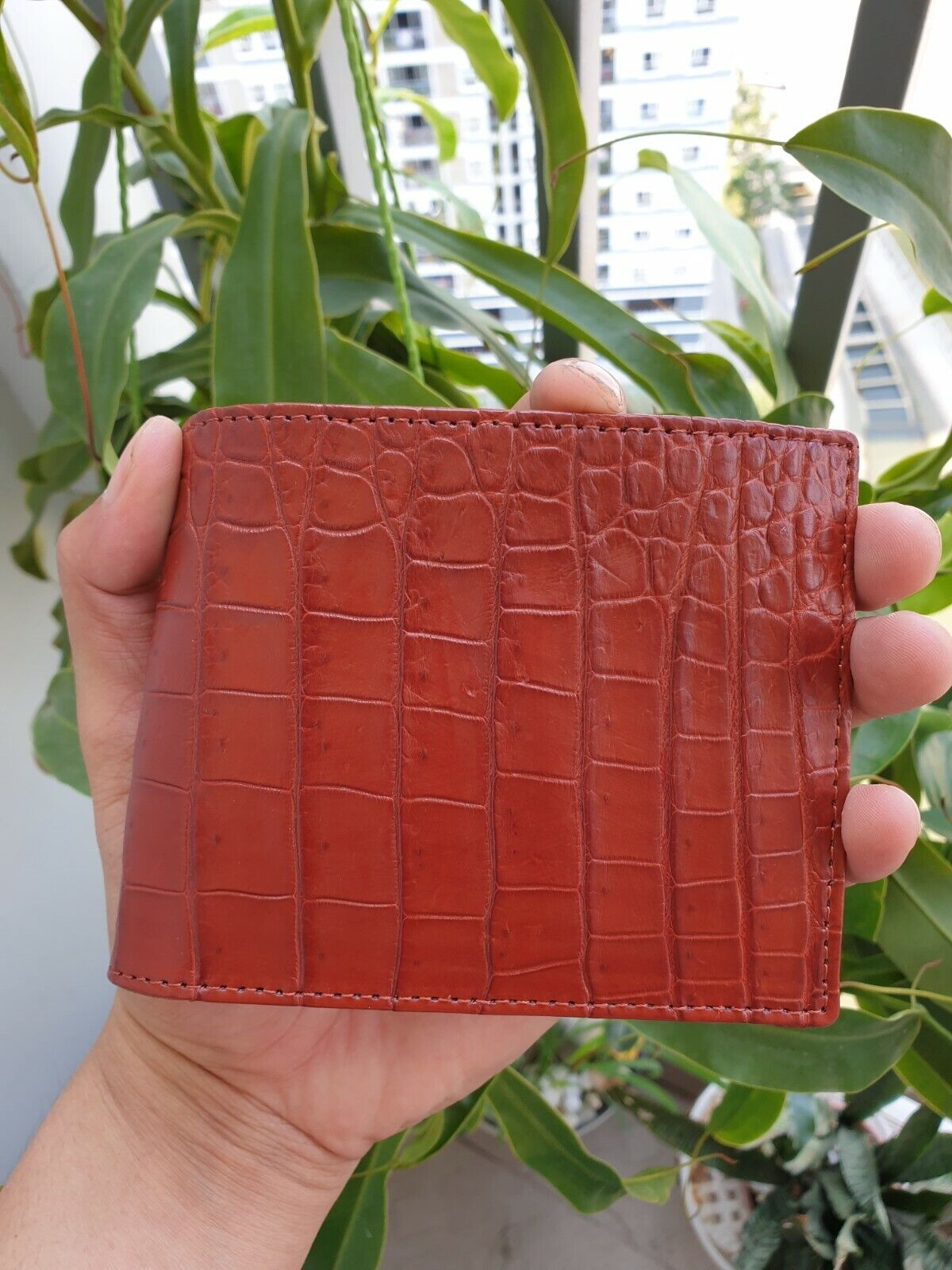 red brown Doubleside Genuine Crocodile Alligator Skin Leather Bi-fold Wallet