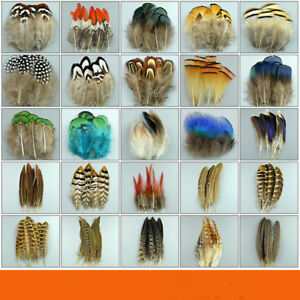 24-Styles-Natural-Pheasant-Feathers-Pheasant-Plume-Millinery-Hats-Costume-50-pcs