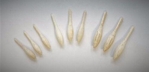"""Quantity .20 /""""Carpa Caster Shape/"""" bodies Choose Size"""