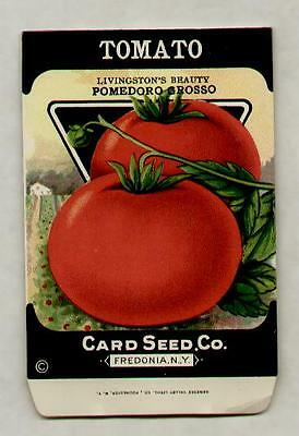 1920's LITHO CARD CO. RED POMEDORO GROSSO TOMATO SEED PACKET