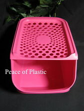 Tupperware New Onion & Garlic Potato Smart Mate Container ACCESS PINK Punch