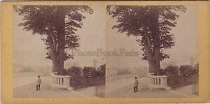 Pyrenees Stereo Stereoview Vintage Albumina Ca 1865