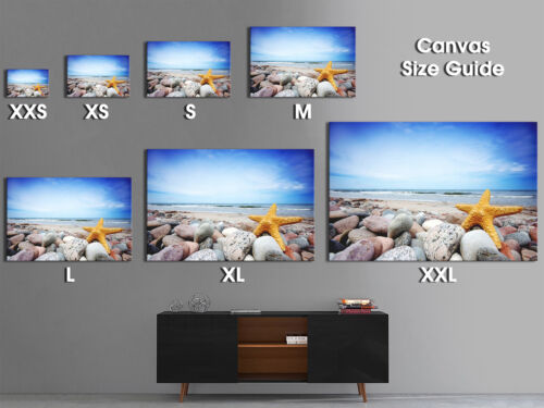 AB117 Blue Yellow Starfish Beach Modern Abstract Canvas Wall Art Picture Prints