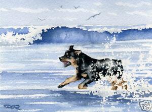 ROTTWEILER-ART-Print-Beach-Watercolor-Painting-Dog-8-x-10-Signed-by-Artist-DJR