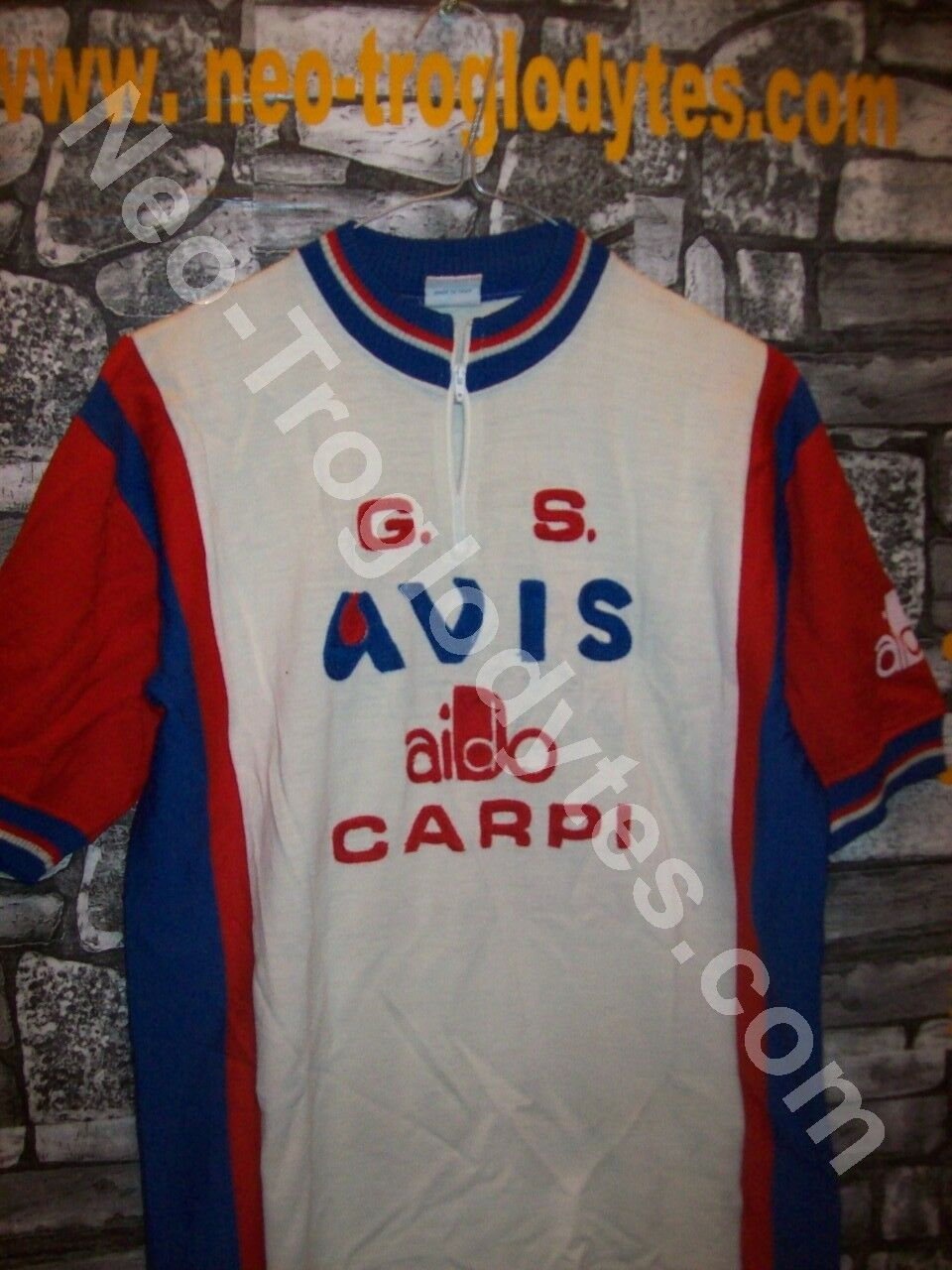 VINTAGE maglia maglia maglia Ciclismo G S Avis Carpi 70 ricamata 8e0d8e