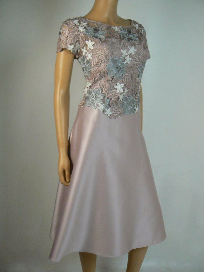 Adrianna Papell Dusty Rosa Floral Lace Bodice Fit & Flare Dress 6 NWT A979
