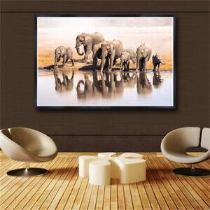 "ELEPHANT ELEPHANTS A4 GLOSS POSTER PRINT LAMINATED 11.7/""x8.3/"""