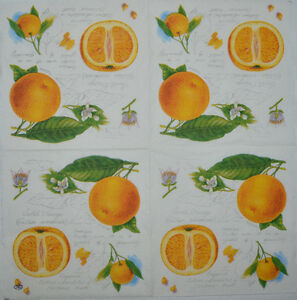 FLOWER PAPER TABLE NAPKINS FOR CRAFT VINTAGE FOLK DECOUPAGE TEA PARTIES 134