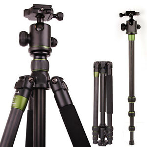 SYS500C-Carbon-Fiber-Tripod-Monopod-BallHead-Travel-for-DSLR-Nikon-Canon-Camera