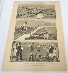 large-1889-magazine-engraving-ALGERIA-Plague-of-Crickets