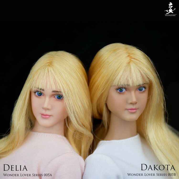 WONDERY WLS005B 1 6 Scale Beauty Girl Dakota Head Sculpt F 12'' Suntan Body
