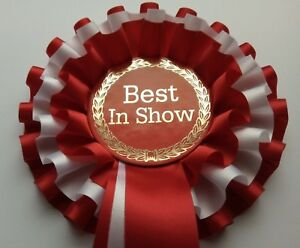 10 x winner rosettes different colours single tier dog show event