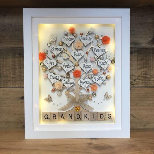 Personnalisé Boîte à lumière Cadre Grande Famille Arbre de Noël Petits-Enfants Cadeau Fleurs