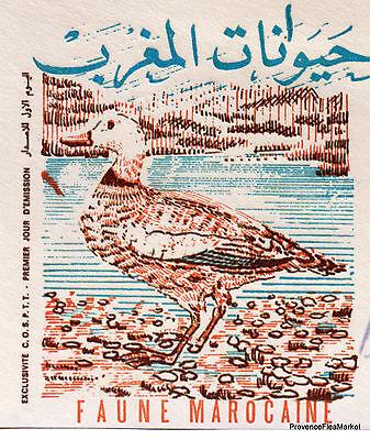 100% QualitäT Tierwelt Marokkanisch VÖgel Marokko Morocco Umschlag Premier Tag Fdc Ma690 SchöN In Farbe