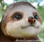Large-Climbing-Sloth-swinging-on-rope-tree-garden-sculpture-ornament-decoration thumbnail 3