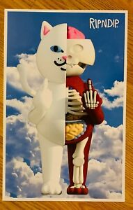 RIPNDIP Lord Nermal 2020 Anatomy Collection 11 x 17 Poster