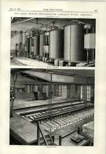 1890 Linde Refrigeration Works Shadwell Icemaking Tanks Ammonia Condensers