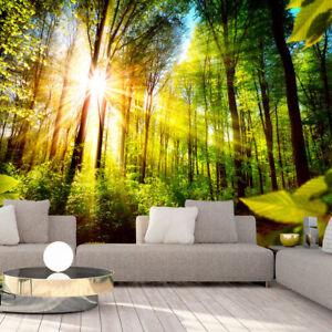 Das Bild Wird Geladen Vlies Fototapete Wald Sonne Landschaft Natur Tapete  Xxl