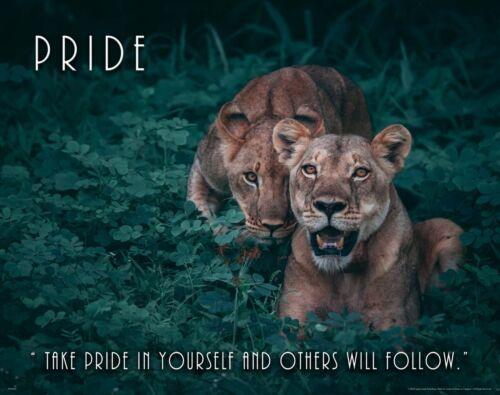 Lion Wildlife Motivational Poster Art Print Decor Cat Zoo Classroom Pride MVP652