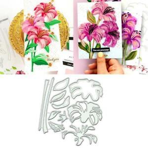Susie DIY Metal Cutting Dies Stencil Scrapbooking Die Cuts Paper Card Decor