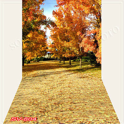 Autumn 10'x20'Computer/Digital Vinyl Scenic Photo Backdrop Background SV804B88