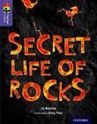 Oxford Reading Tree Treetops Infact: Level 11: Secret Life of Rocks by Jo Bourne (Paperback, 2015)