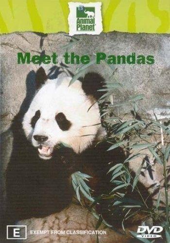 1 of 1 - MEET THE PANDAS. LIKE NEW, R4