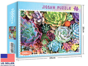 New-Succulent-plants-1000-PIECE-JIGSAW-PUZZLES-education-KID-ADULTS-PUZZLE-TOY
