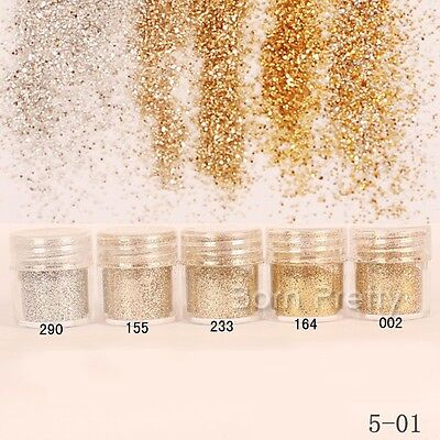 10ml Champagne Silver Glitter Powder Super Fine Powder Sheets Tips Nail Art