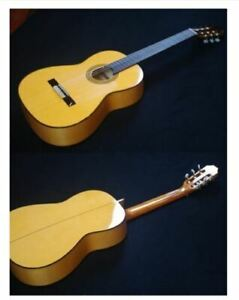 Aria ACE-9F Spanish Flamenco Acoustic Guitar Shipped from Japan