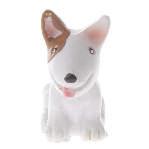 Pit Bull Terrier Miniatur Figur Landschaft Hof Bonsai DIY Dekor Handwerk