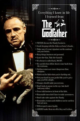 The Godfather everything I know 24x36 poster don Vito mob crime family cat GIFT!