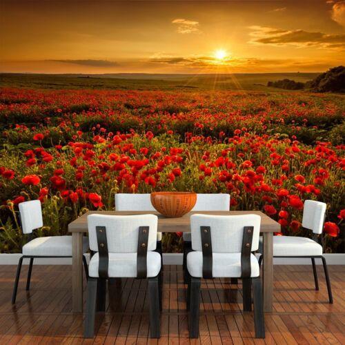 Mohnblumen-Blumen-Sonnenuntergang Wandbild Red Floral Foto-Tapete Wohnzimmer