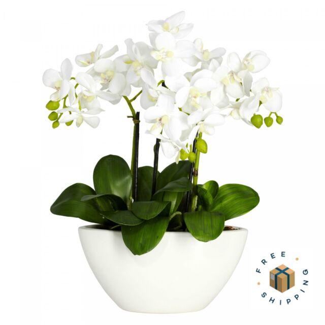 Artificial Flower Arrangement Phalaenopsis Orchid Silk Fake With Decorative Vase For Sale Online Ebay