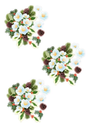 X 6 ensembles Tattered Lace Charisma 250gsm DIE CUTS-Holly 10 combinaisons de couleurs