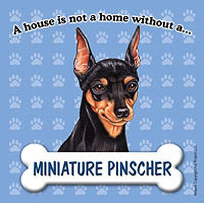 Miniature Pinscher Dog Magnet Sign House Is Not A Home