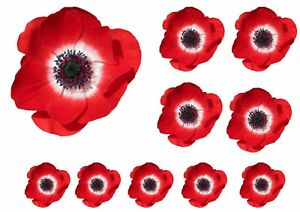 Poppy-Flower-Decals-Car-Stickers-Graphics-Nursery-Wall-Window-remembrance-day