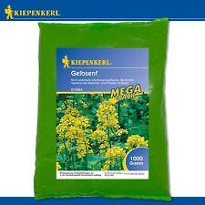 Kiepenkerl 1 kg GelbsenfMega-Pack