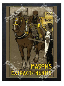 Historic-Mason-039-s-Extract-of-Herbs-1910-Advertising-Postcard