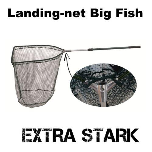 Specialist Big Fish épuisette/Landing Net avec metallkopf u. telestiel
