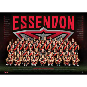 AFL-2017-Team-Essendon-Bombers-POSTER-60x80cm-NEW-Aussie-Football-League-Players