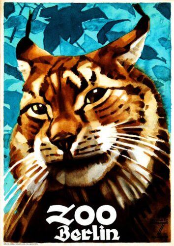 Berlin Germany Zoo Bob Cat Mountain Lion Advertisement Travel Art Poster