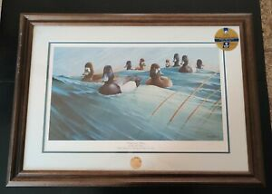 """RON VAN GILDER """"WINDS AND WAVES"""" DUCKS 1990 SIGNED AND NUMBERED PRINT ONLY"""