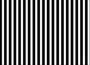 3f22d546d8b5b Image is loading 8x8FT-Vinyl-Black-White-Stripes -Backdrop-Photography-Background-