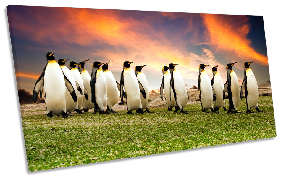 Penguins March Sunset PANORAMIC CANVAS WALL ART Print Picture