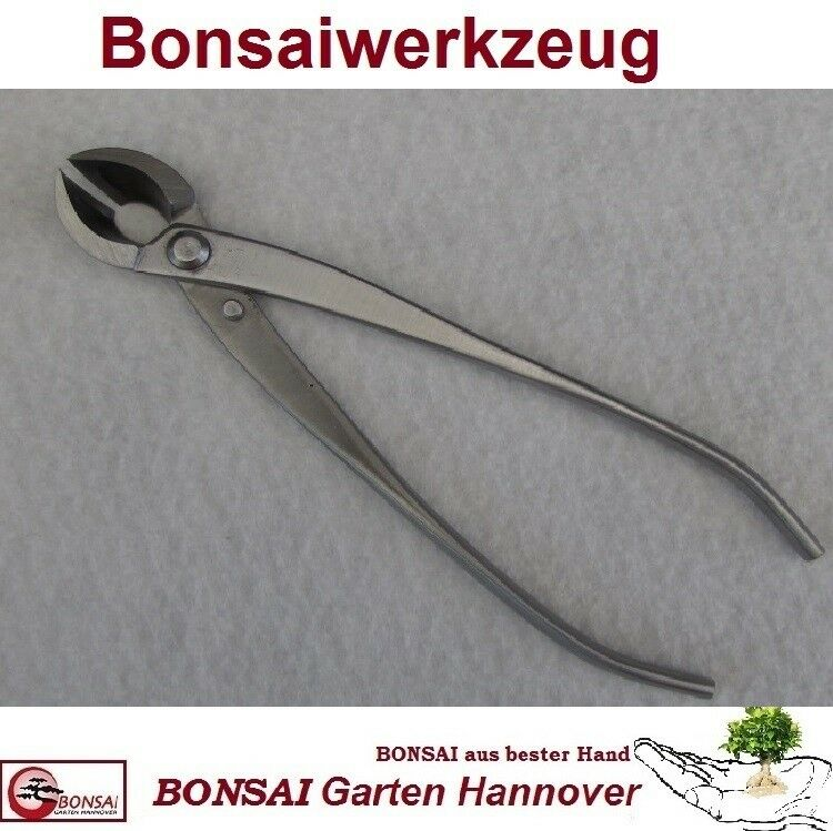 Bonsai Konkavzange gerade DINGMU 20 cm - Edelstahl poliert abgerunderter Schnitt